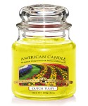VELA AMERICAN CANDLE MINI TULIPS