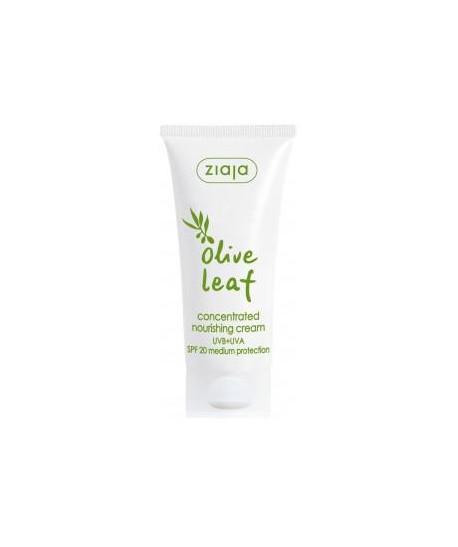 Hoja de Olivo Crema facial concentrada SPF20